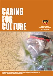 Caring for Culture: Image